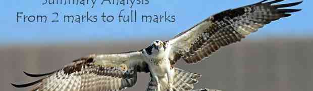 Osprey - Summary Analysis